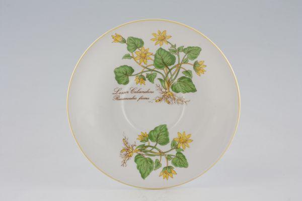 Elizabethan Botanical Series
