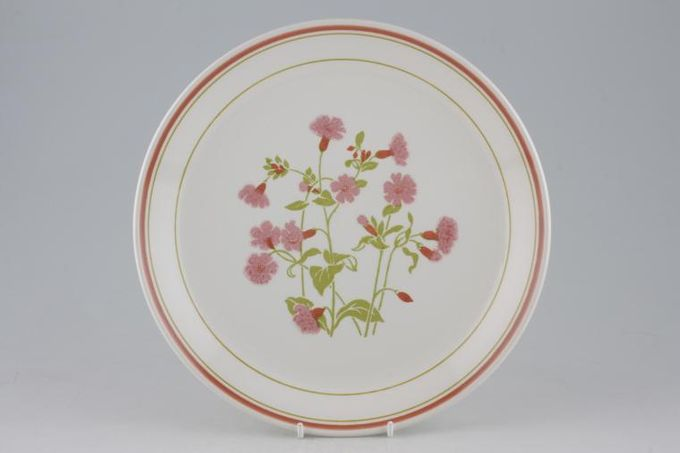 Johnson Brothers Coniston Dinner Plate 9 7/8""