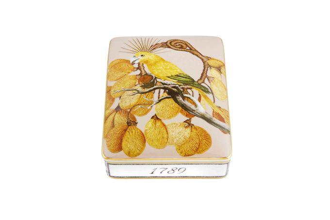Vista Alegre Amazonia Card Box Lighter