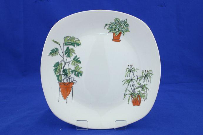 Midwinter Plant Life