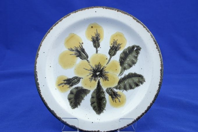 Midwinter Primula Dinner Plate
