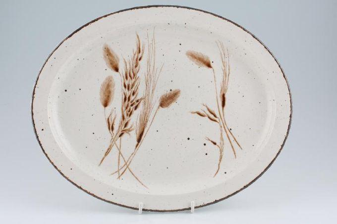 """Midwinter Wild Oats Oval Plate / Platter 14"""""""