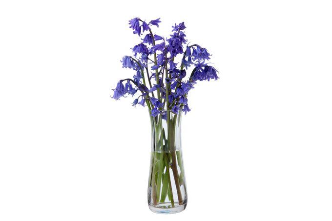 Dartington Crystal Florabundance Vase Bluebell Vase
