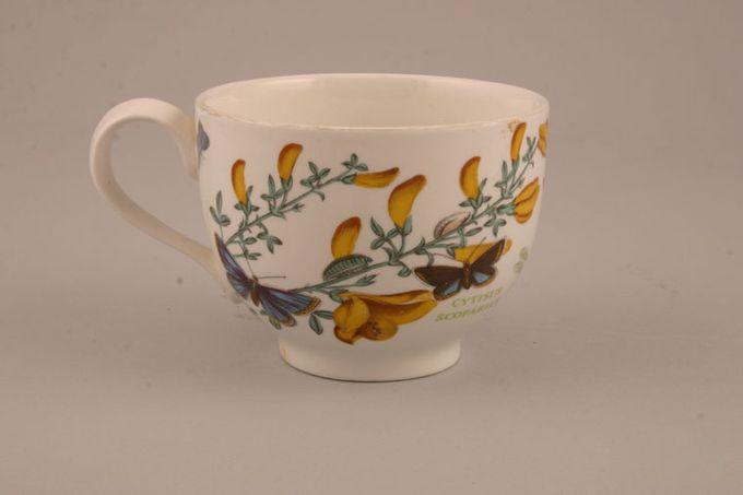 "Portmeirion Botanic Garden Teacup Romantic shape - Cytisus Scoparius - Broom - named 25th Anninverasry Edition 3 1/2 x 2 5/8"""