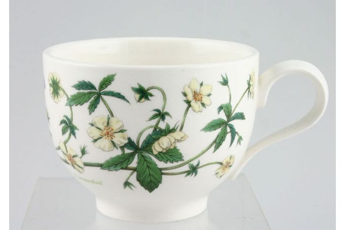 """Portmeirion Botanic Garden Teacup Romantic shape - Potentilla Reptans - Cinquefoil - named 3 1/2 x 2 5/8"""""""