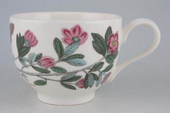 "Portmeirion Botanic Garden Teacup Romantic shape - Lepidotum - Rhododendron 3 1/2 x 2 5/8"""