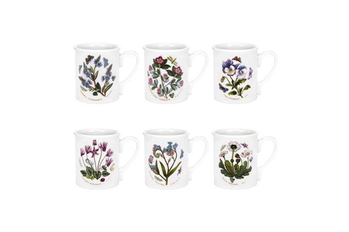 Portmeirion Botanic Garden Mug - Set of 6 Breakfast Mug Set of 6 9oz