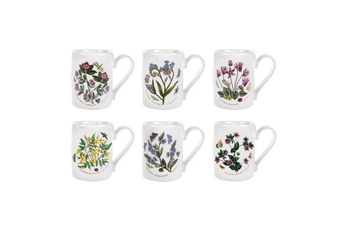 Portmeirion Botanic Garden Mug - Set of 6 Set of 6 10oz