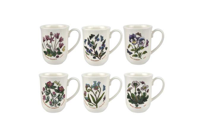 Portmeirion Botanic Garden Set of 6 Mugs Tulip Beaker