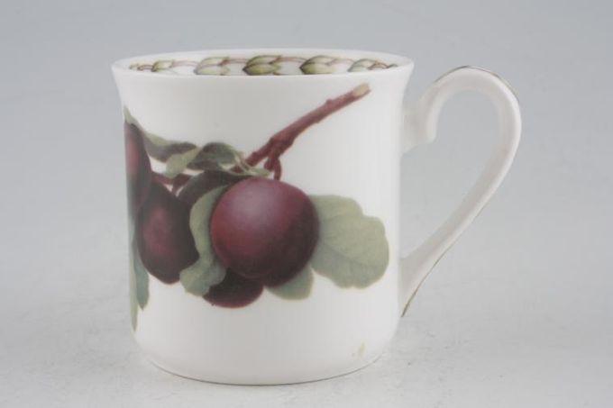 """Queens Hookers Fruit Coffee/Espresso Can Plum 2 3/8 x 2 1/2"""""""