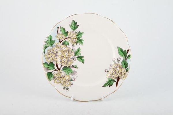 Royal Albert Flower of the Month Series - Hand Painted - Hawthorn No.5