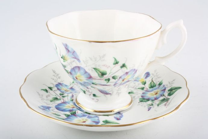Royal Albert Morning Glory - Friendship Series