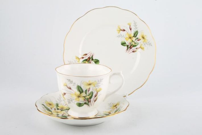 Royal Albert Primrose