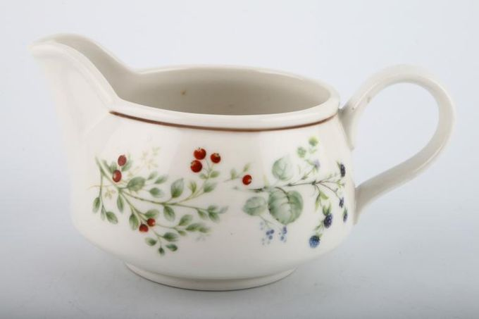 Royal Albert Bitter Sweet Gravy Jug