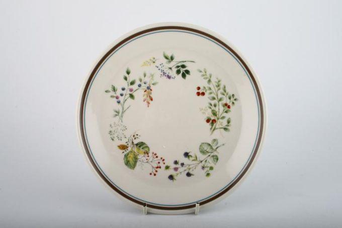 "Royal Albert Bitter Sweet Breakfast / Salad / Luncheon Plate 9 1/2"""
