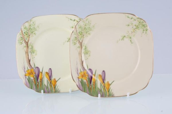 Royal Albert Crocus