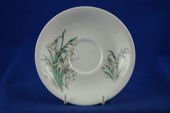 Royal Albert Flowers of the Month - No gold around rim-January- Snowdrop