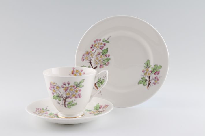 Royal Albert Flowers of the Month - No gold around rim-May-Hawthorn
