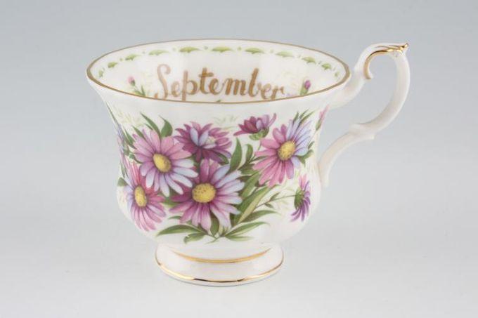 "Royal Albert Flower of the Month Series - Montrose - September - Michaelmas D Teacup Montrose shape - light fluting 3 1/2 x 2 3/4"""