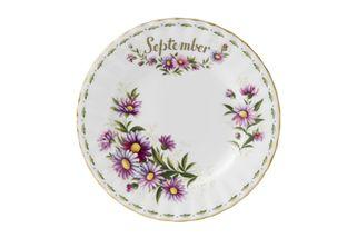 Royal Albert Flower of the Month Series - Montrose - September - Michaelmas D Dinner Plate
