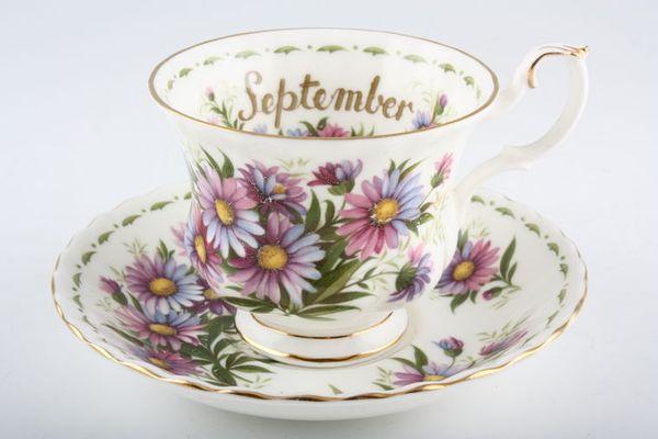 Royal Albert Flower of the Month Series - Montrose - September - Michaelmas D
