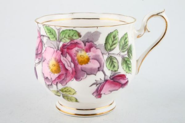 Royal Albert Flower of the Month Series - Hand Painted - Dog Rose No.6