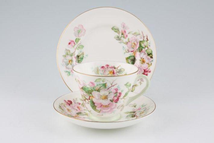 Royal Doulton Apple Blossom - H4899