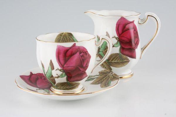 Royal Standard English Rose