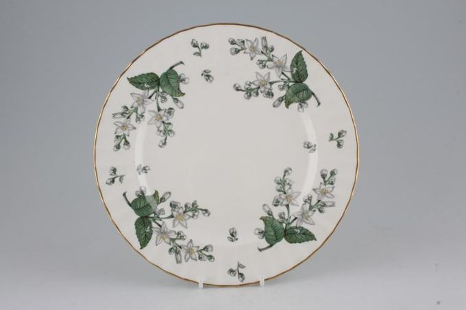 Royal Worcester Valencia Breakfast / Salad / Luncheon Plate 9 1/4""