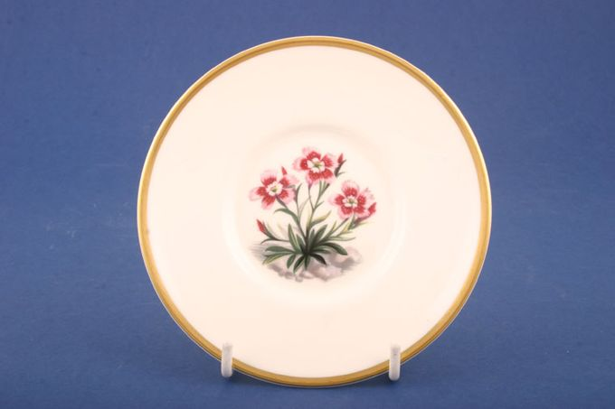 """Royal Worcester Alpine Flowers Coffee Saucer No 6 - Well size 2 1/4"""" For Cans 5"""""""