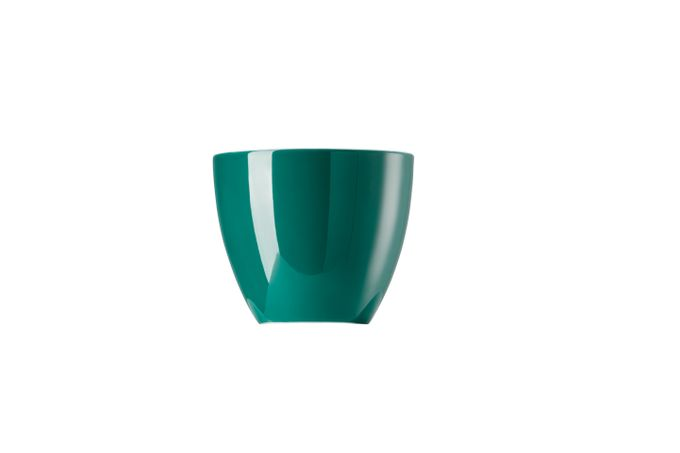 Thomas Sunny Day - Seaside Green Egg Cup