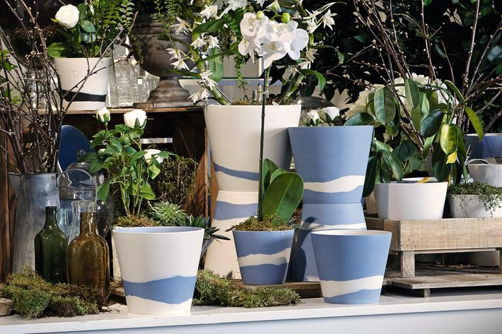 Wedgwood Burlington Pots