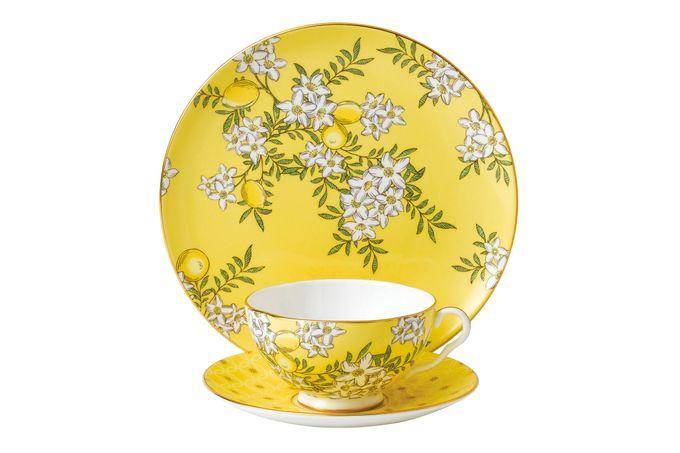 Wedgwood Tea Garden 3 Piece Set Plate 21cm, Teacup & Saucer Lemon & Ginger