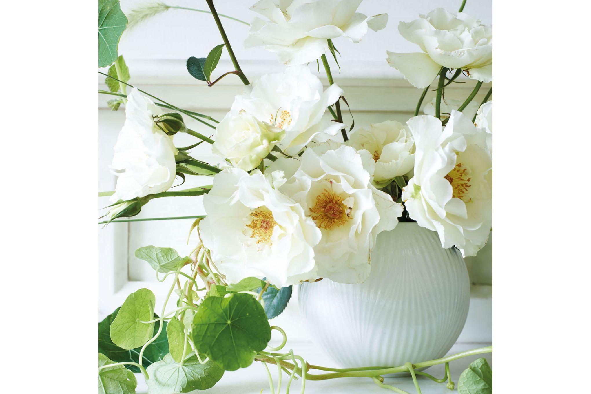 Wedgwood White Folia Rose Bowl 12.5cm thumb 2